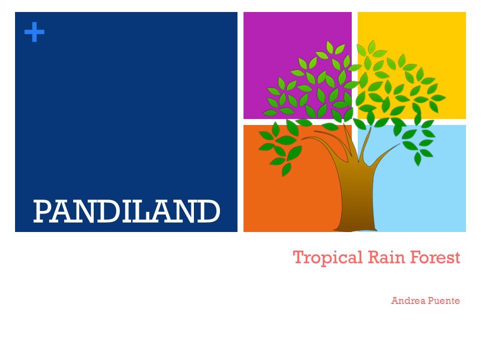 + Tropical Rain Forest Andrea Puente PANDILAND