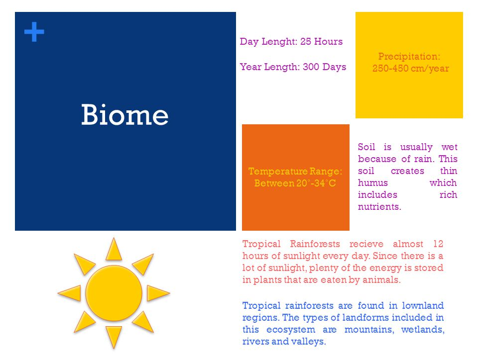 + Biome Day Lenght: 25 Hours Year Length: 300 Days Temperature Range: Between 20˚-34˚C Precipitation: 250-450 cm/year Soil is usually wet because of rain.