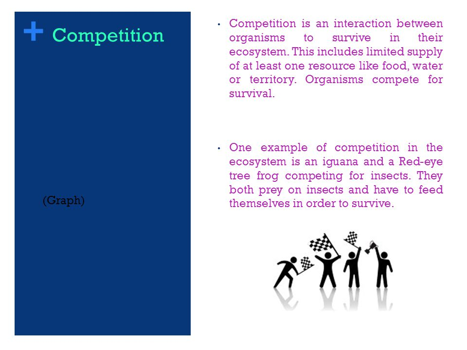 + Competition is an interaction between organisms to survive in their ecosystem.