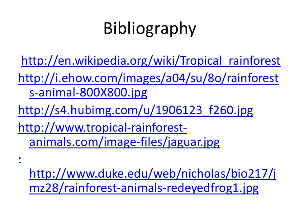 Bibliography http://en.wikipedia.org/wiki/Tropical_rainforest http://i.ehow.com/images/a04/su/8o/rainforest s-animal-800X800.jpg http://s4.hubimg.com/u/1906123_f260.jpg http://www.tropical-rainforest- animals.com/image-files/jaguar.jpg : http://www.duke.edu/web/nicholas/bio217/j mz28/rainforest-animals-redeyedfrog1.jpg http://www.duke.edu/web/nicholas/bio217/j mz28/rainforest-animals-redeyedfrog1.jpg