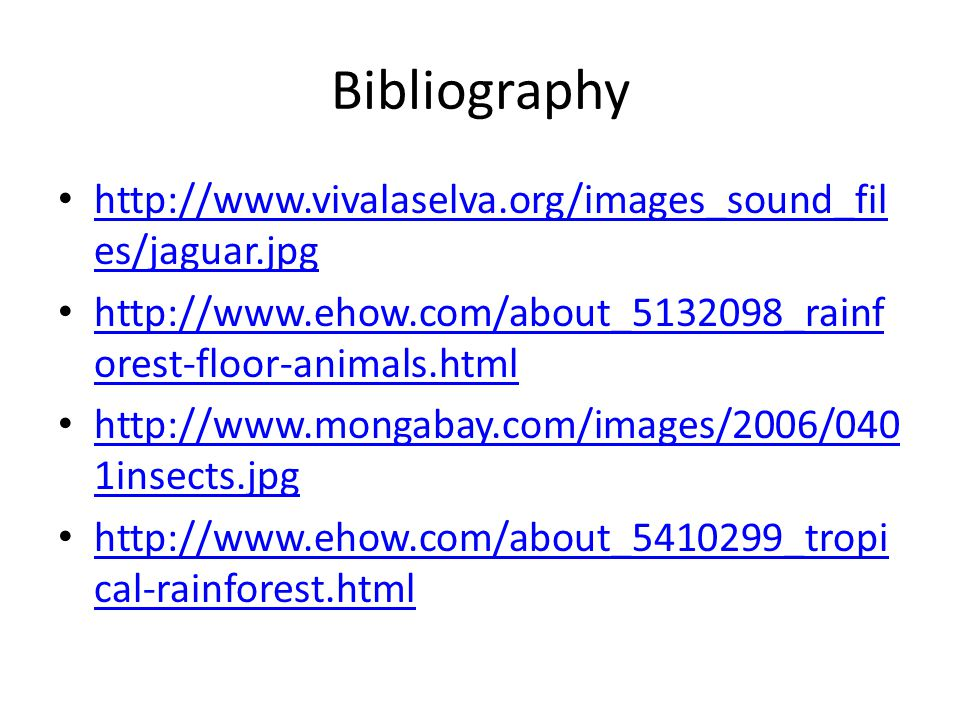 Bibliography http://www.vivalaselva.org/images_sound_fil es/jaguar.jpg http://www.vivalaselva.org/images_sound_fil es/jaguar.jpg http://www.ehow.com/about_5132098_rainf orest-floor-animals.html http://www.ehow.com/about_5132098_rainf orest-floor-animals.html http://www.mongabay.com/images/2006/040 1insects.jpg http://www.mongabay.com/images/2006/040 1insects.jpg http://www.ehow.com/about_5410299_tropi cal-rainforest.html http://www.ehow.com/about_5410299_tropi cal-rainforest.html