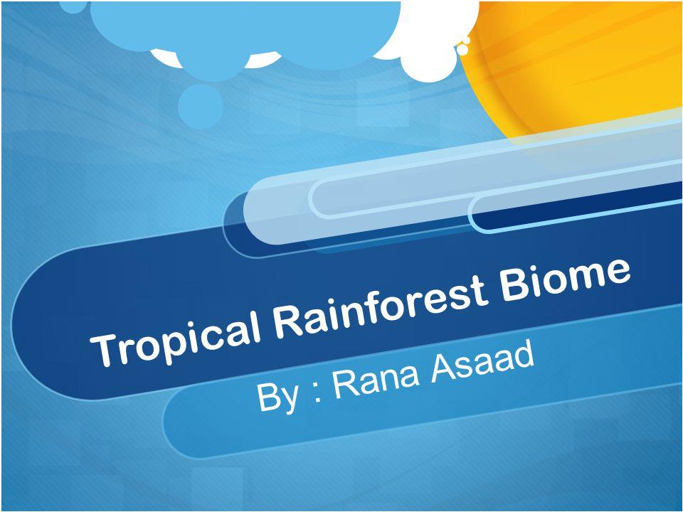 Tropical Rainforest Biome By : Rana Asaad