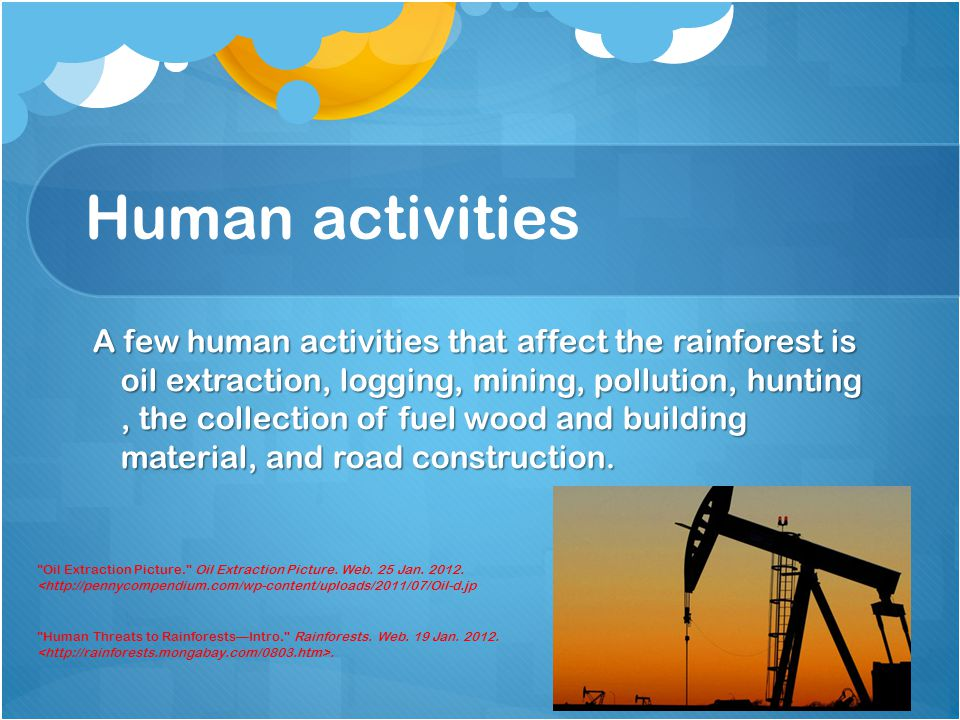 Human activities A few human activities that affect the rainforest is oil extraction, logging, mining, pollution, hunting, the collection of fuel wood and building material, and road construction.