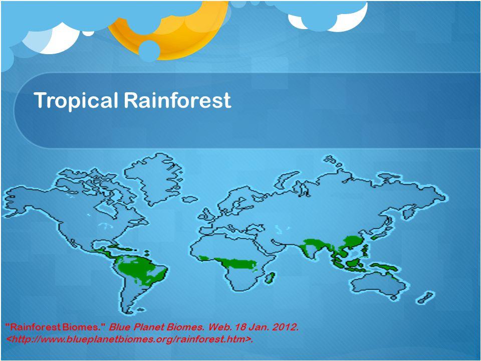 Tropical Rainforest Rainforest Biomes. Blue Planet Biomes. Web. 18 Jan. 2012..