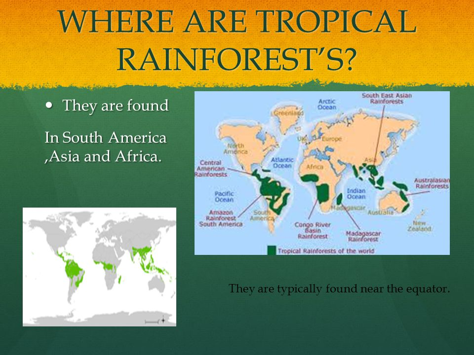 WHERE ARE TROPICAL RAINFOREST'S. They are found They are found In South America,Asia and Africa.