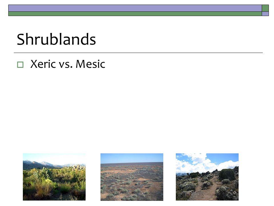 Shrublands  Xeric vs. Mesic