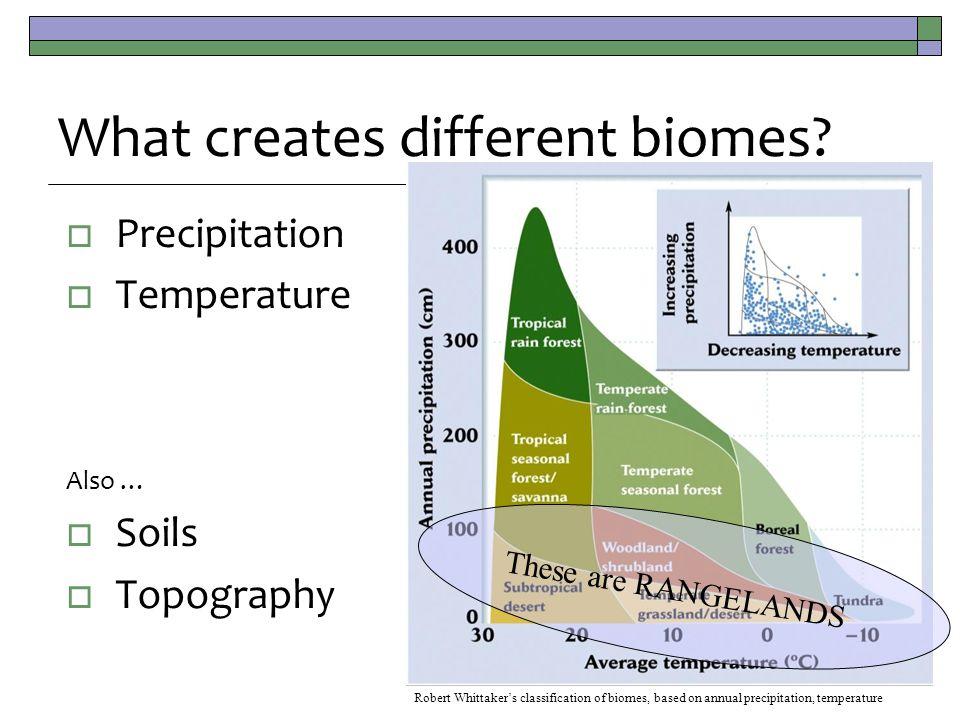  Precipitation  Temperature Also …  Soils  Topography What creates different biomes.