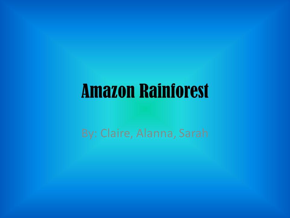 Amazon Rainforest By: Claire, Alanna, Sarah