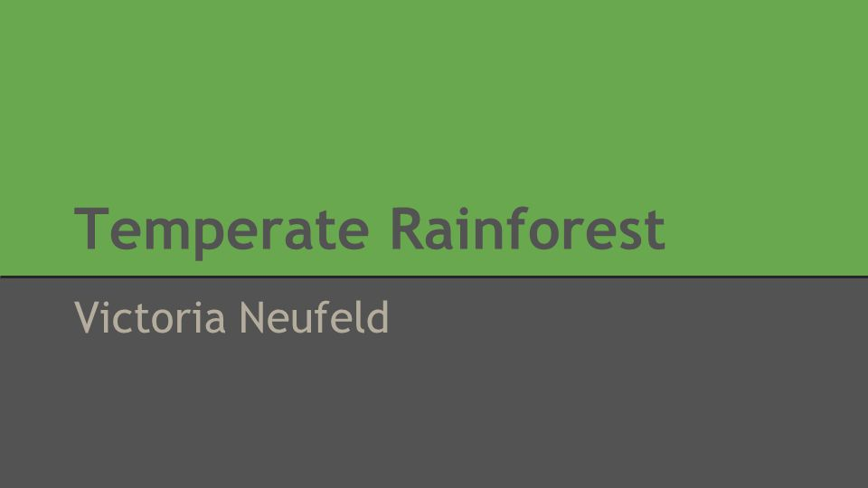 Location of Temperate Rainforests Major locations of temperate rainforest include the pacific coast of North America, and parts of southern South America.