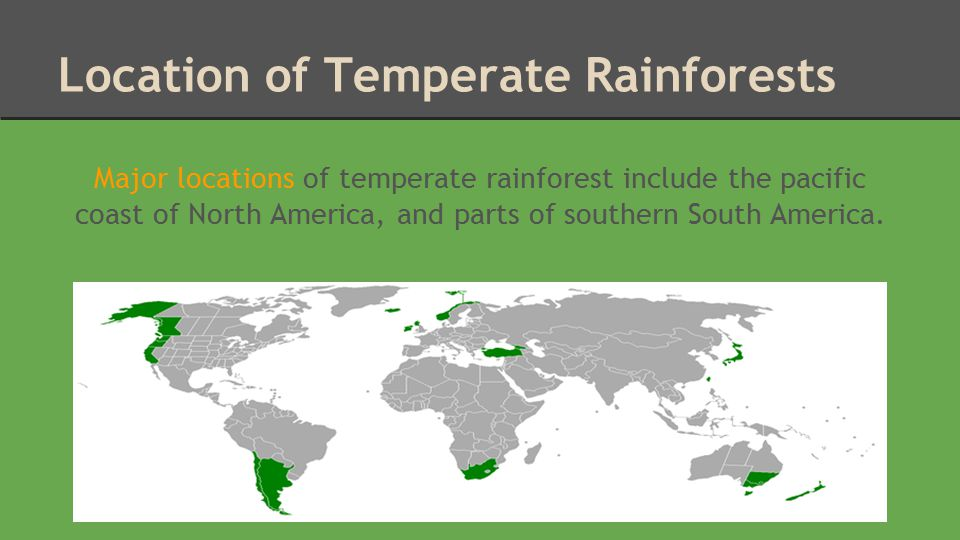 Climate Temperate rainforests have four distinct seasons.