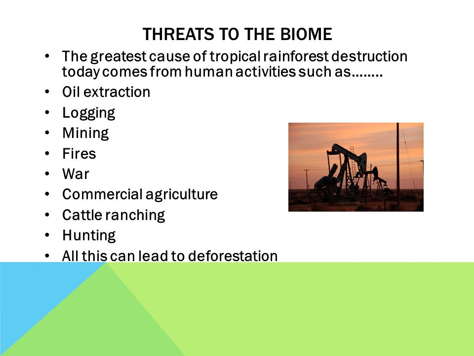 THREATS TO THE BIOME The greatest cause of tropical rainforest destruction today comes from human activities such as……..
