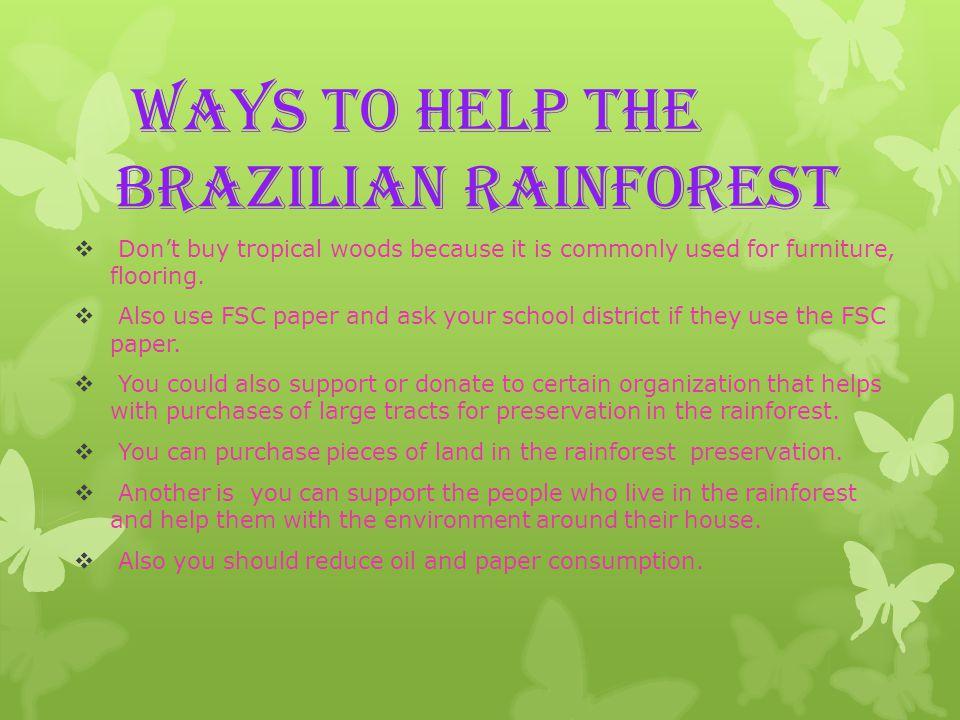 Photos of rainforests