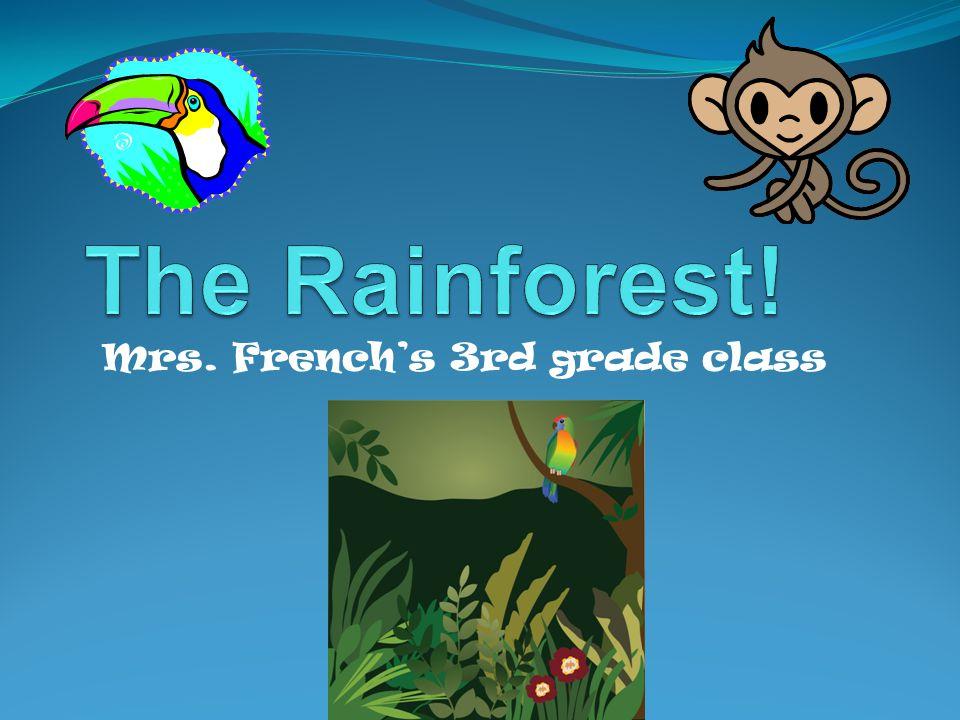 Mrs. French's 3rd grade class class