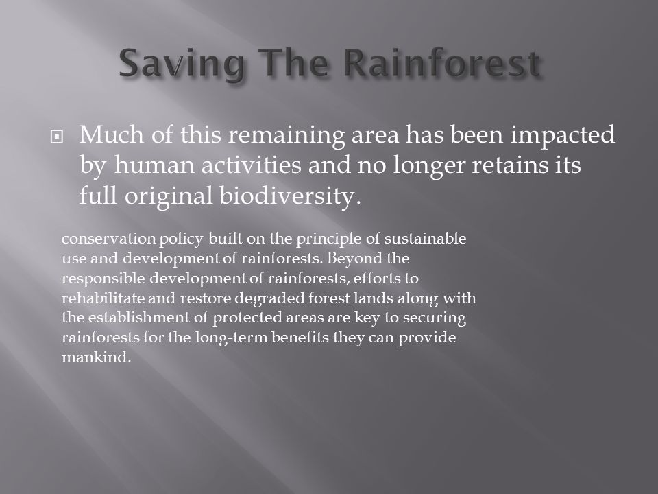 conservation policy built on the principle of sustainable use and development of rainforests. Beyond the responsible development of rainforests, effor