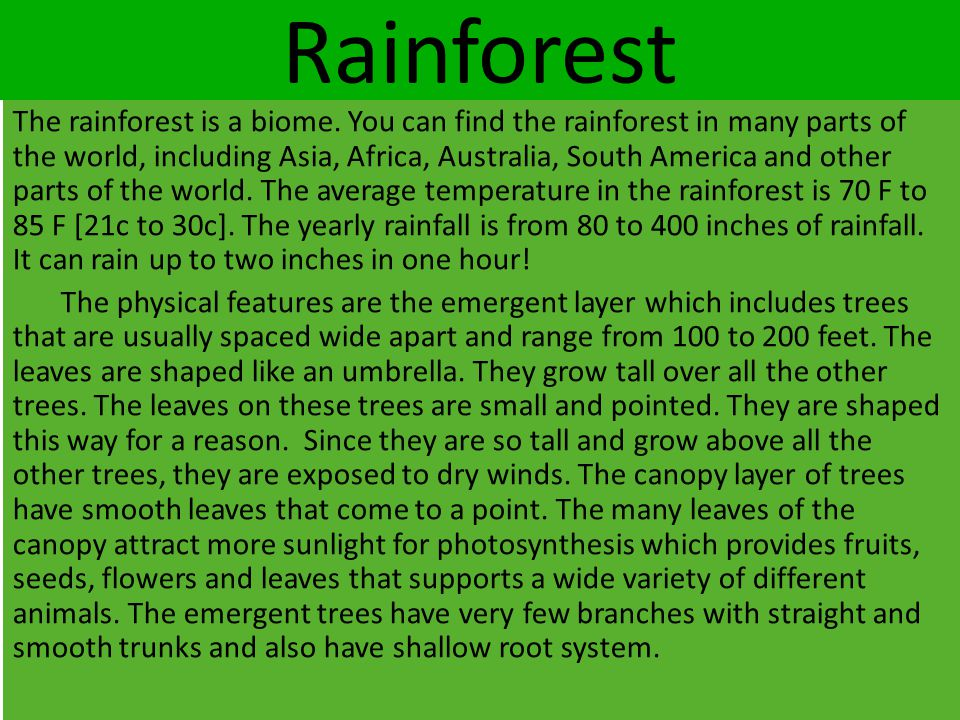 Rainforest The rainforest is a biome. You can find the rainforest in many parts of the world, including Asia, Africa, Australia, South America and oth