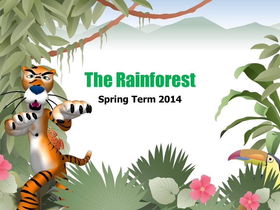 The Rainforest Spring Term 2014