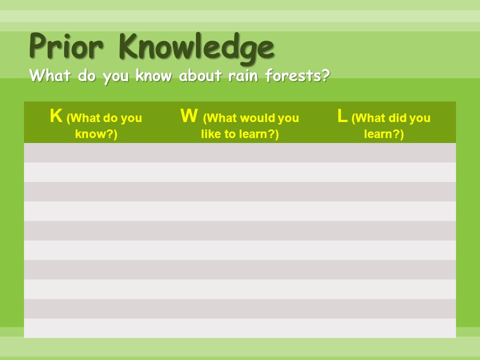 Prior Knowledge What do you know about rain forests? K (What do you know?) W (What would you like to learn?) L (What did you learn?)