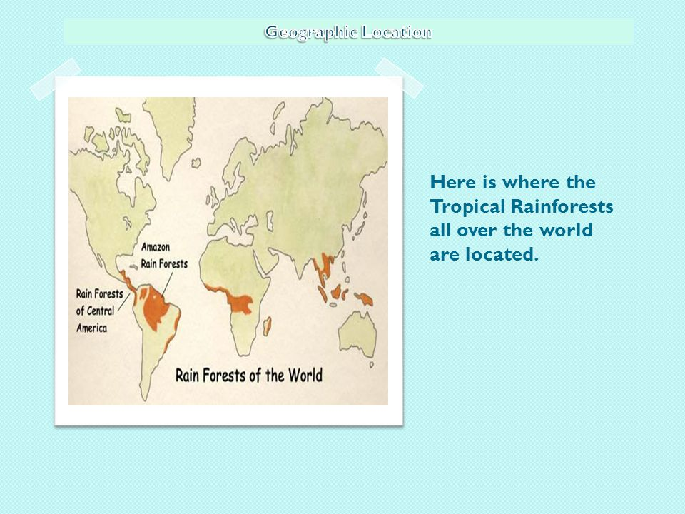 Here is where the Tropical Rainforests all over the world are located.