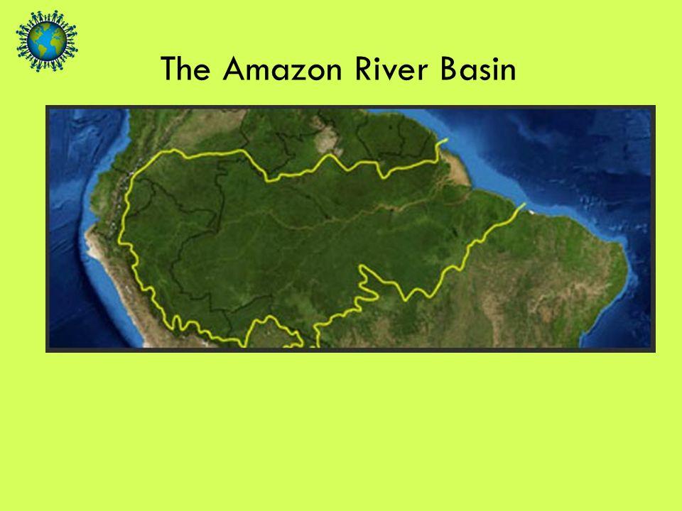 The Amazon River Basin