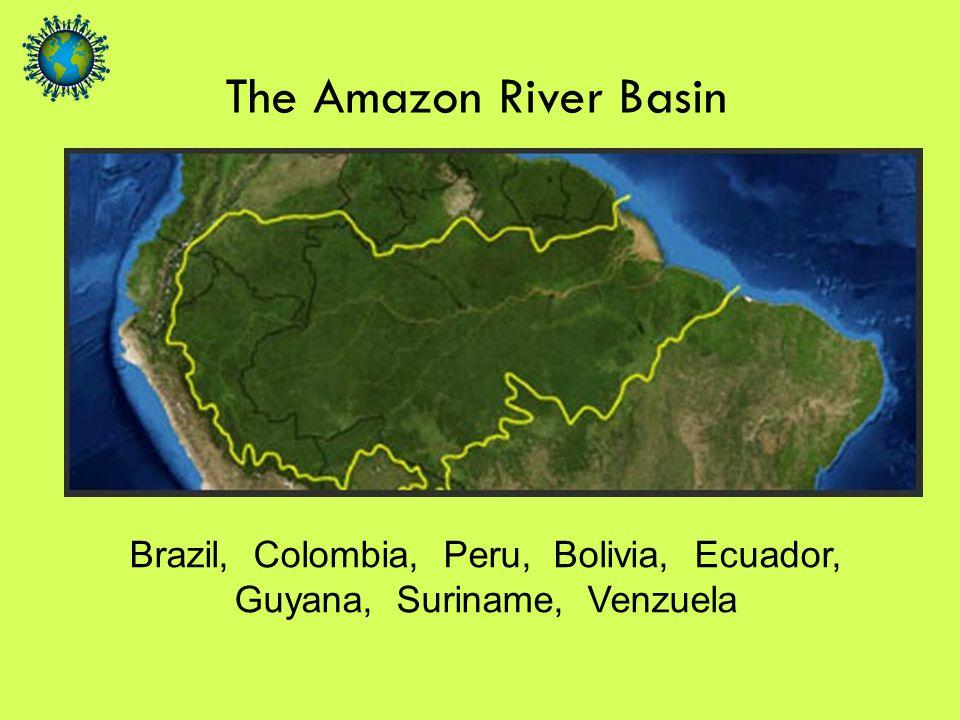 Brazil, Colombia, Peru, Bolivia, Ecuador, Guyana, Suriname, Venzuela