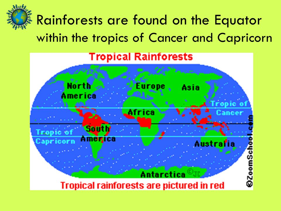 within the tropics of Cancer and Capricorn