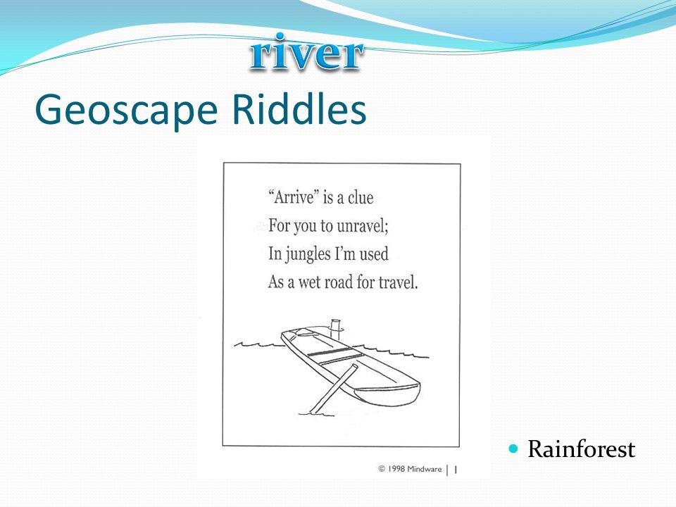 Geoscape Riddles Rainforest