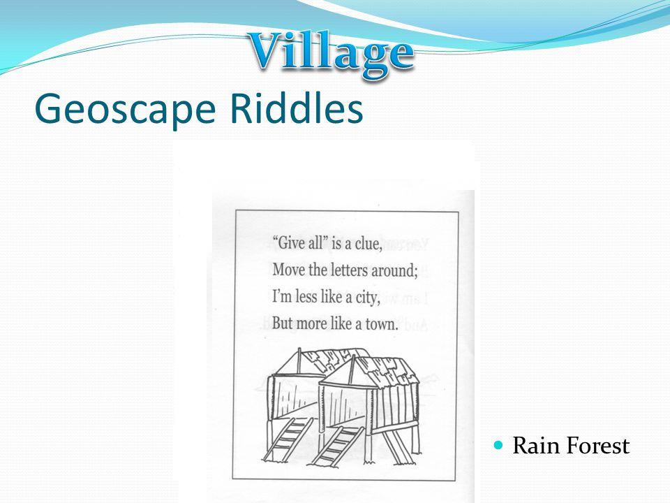 Geoscape Riddles Rain Forest