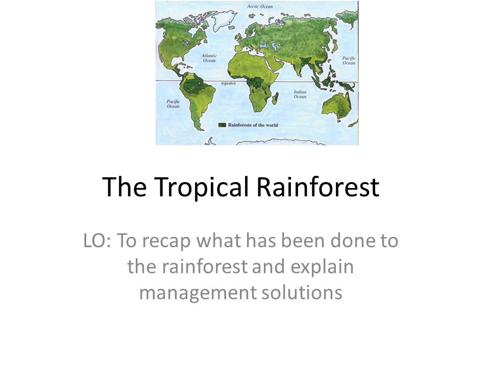 The Tropical Rainforest LO: To recap what has been done to the rainforest and explain management solutions