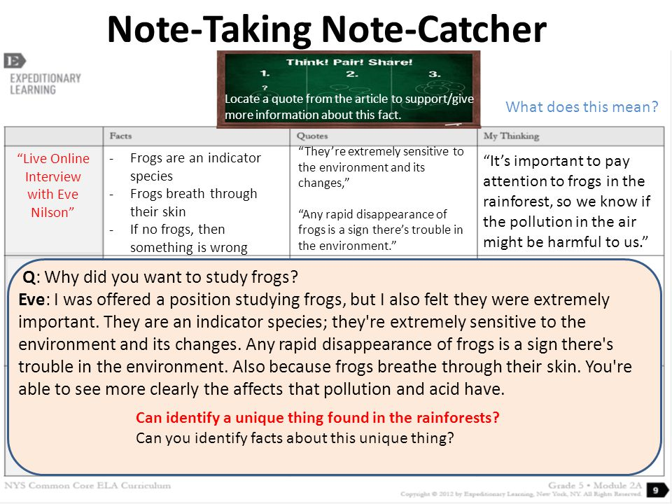 Note-Taking Note-Catcher Live Online Interview with Eve Nilson Q: Why did you want to study frogs.