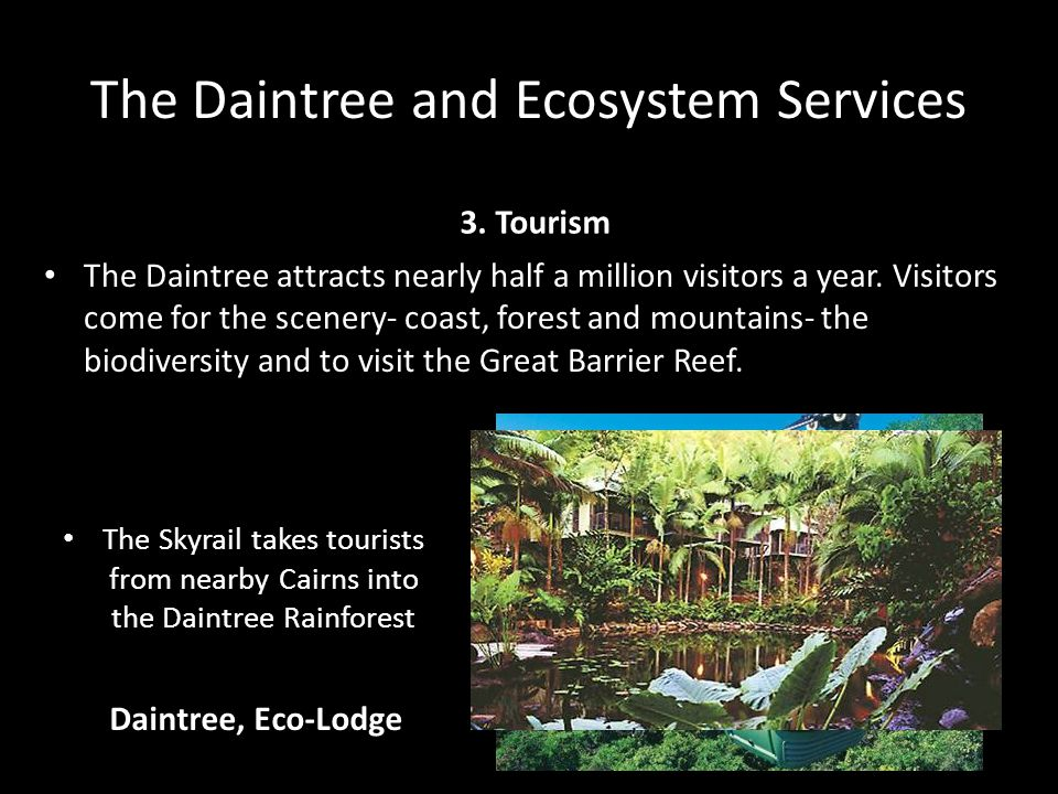 The Daintree and Ecosystem Services 3.