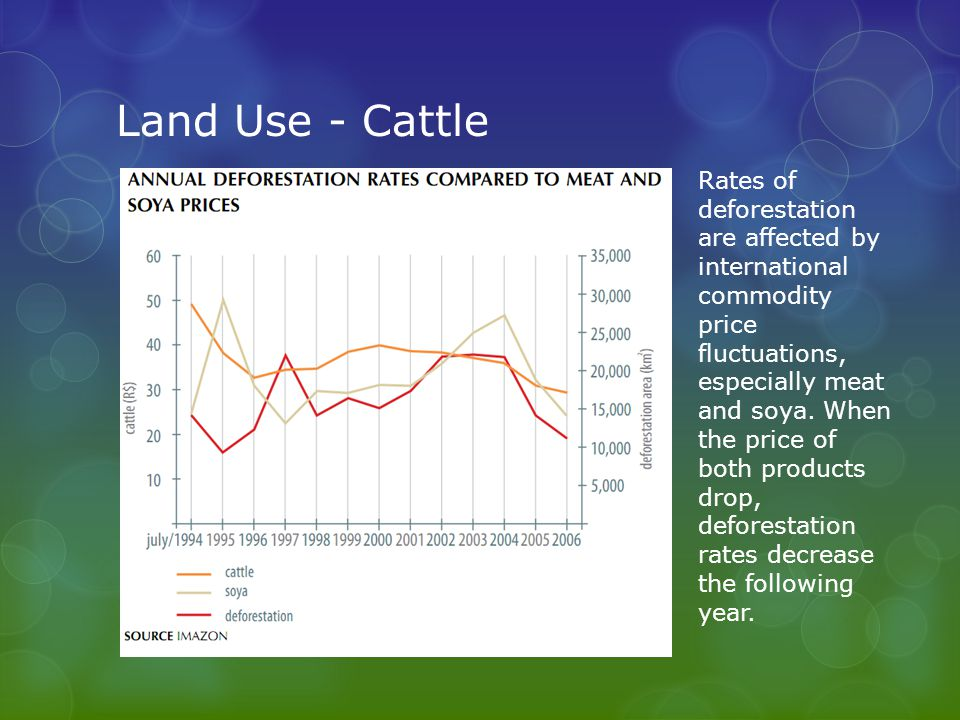 Rates of deforestation are affected by international commodity price fluctuations, especially meat and soya.