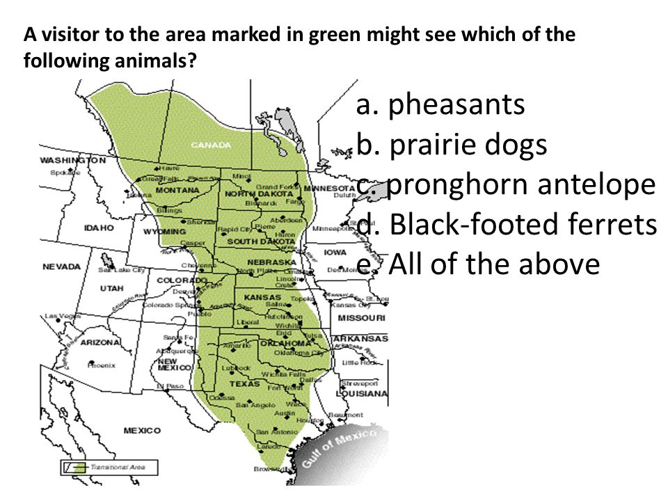 A visitor to the area marked in green might see which of the following animals? a. pheasants b. prairie dogs c. pronghorn antelope d. Black-footed fer