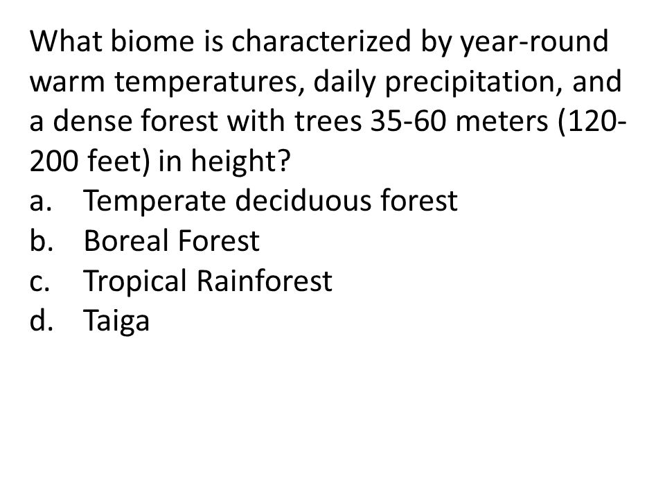 What biome is characterized by year-round warm temperatures, daily precipitation, and a dense forest with trees 35-60 meters (120- 200 feet) in height