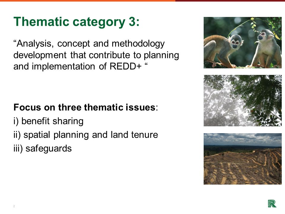 Thematic category 3: Analysis, concept and methodology development that contribute to planning and implementation of REDD+ Focus on three thematic issues: i) benefit sharing ii) spatial planning and land tenure iii) safeguards 2