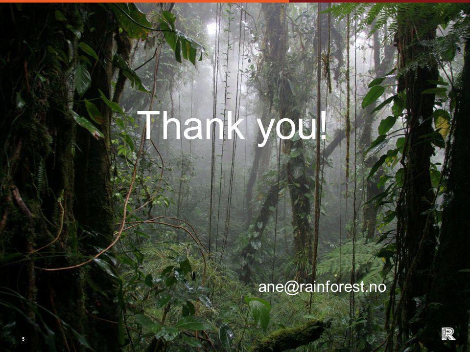 5 Thank you! ane@rainforest.no