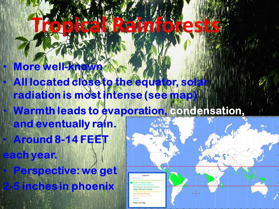 Tropical Rainforests More well-known All located close to the equator, solar radiation is most intense (see map) Warmth leads to evaporation, condensation, and eventually rain.