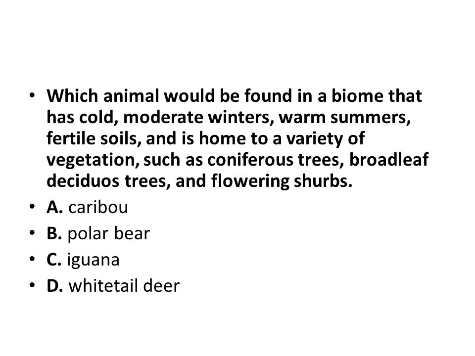 Which animal would be found in a biome that has cold, moderate winters, warm summers, fertile soils, and is home to a variety of vegetation, such as c