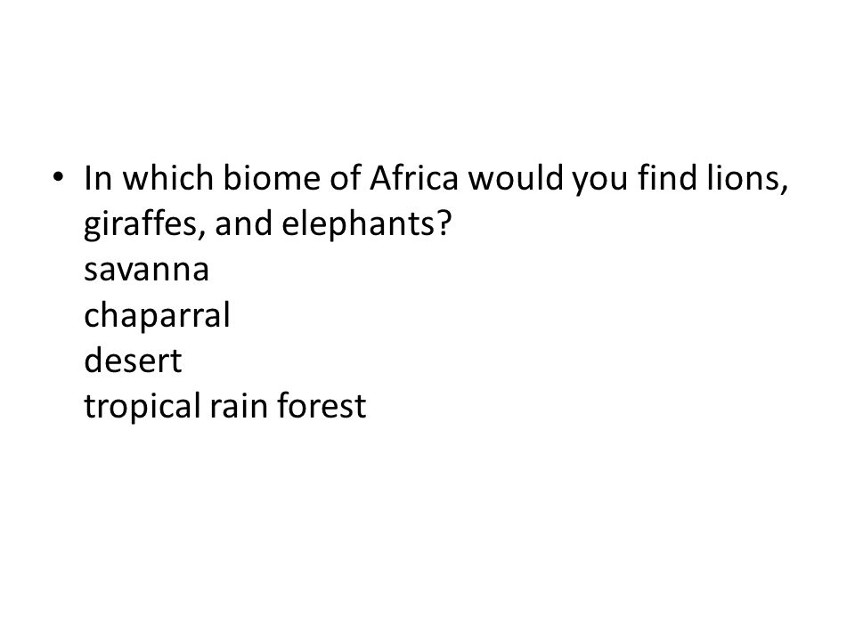 In which biome of Africa would you find lions, giraffes, and elephants? savanna chaparral desert tropical rain forest