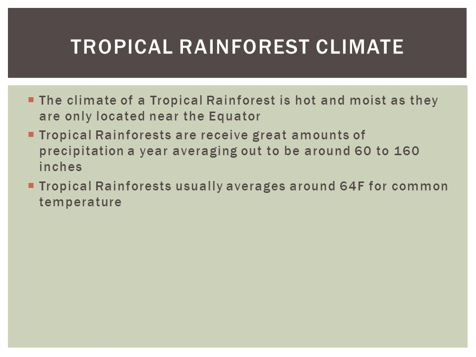  The climate of a Tropical Rainforest is hot and moist as they are only located near the Equator  Tropical Rainforests are receive great amounts of