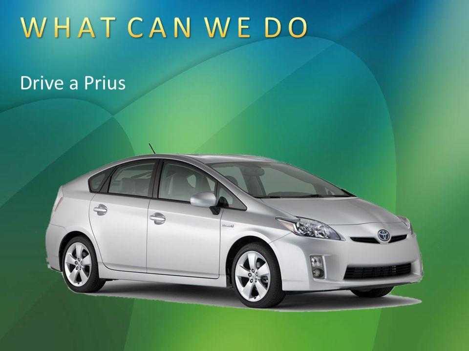 Drive a Prius