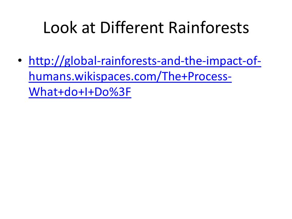 Look at Different Rainforests http://global-rainforests-and-the-impact-of- humans.wikispaces.com/The+Process- What+do+I+Do%3F http://global-rainforests-and-the-impact-of- humans.wikispaces.com/The+Process- What+do+I+Do%3F