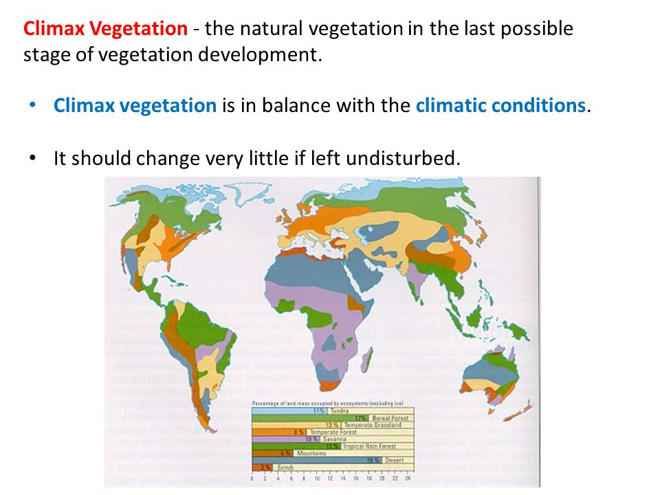 Climax Vegetation - the natural vegetation in the last possible stage of vegetation development.