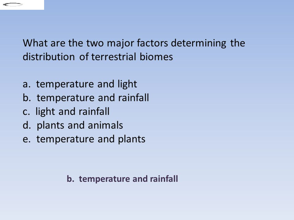 Which biome has year round warm temperatures and relatively constant precipitation.
