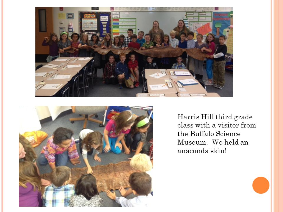 Harris Hill third grade class with a visitor from the Buffalo Science Museum.