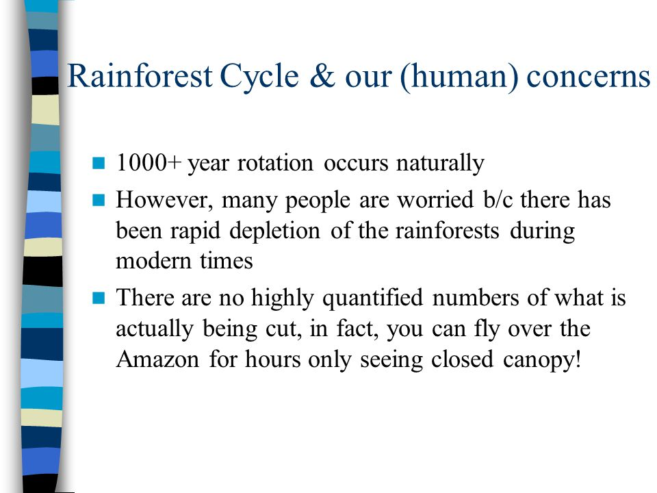 Rainforest Cycle & our (human) concerns 1000+ year rotation occurs naturally However, many people are worried b/c there has been rapid depletion of th