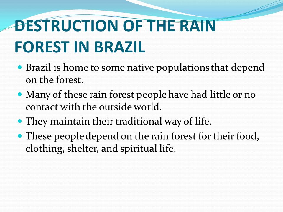 DESTRUCTION OF THE RAIN FOREST IN BRAZIL Brazil is home to some native populations that depend on the forest.