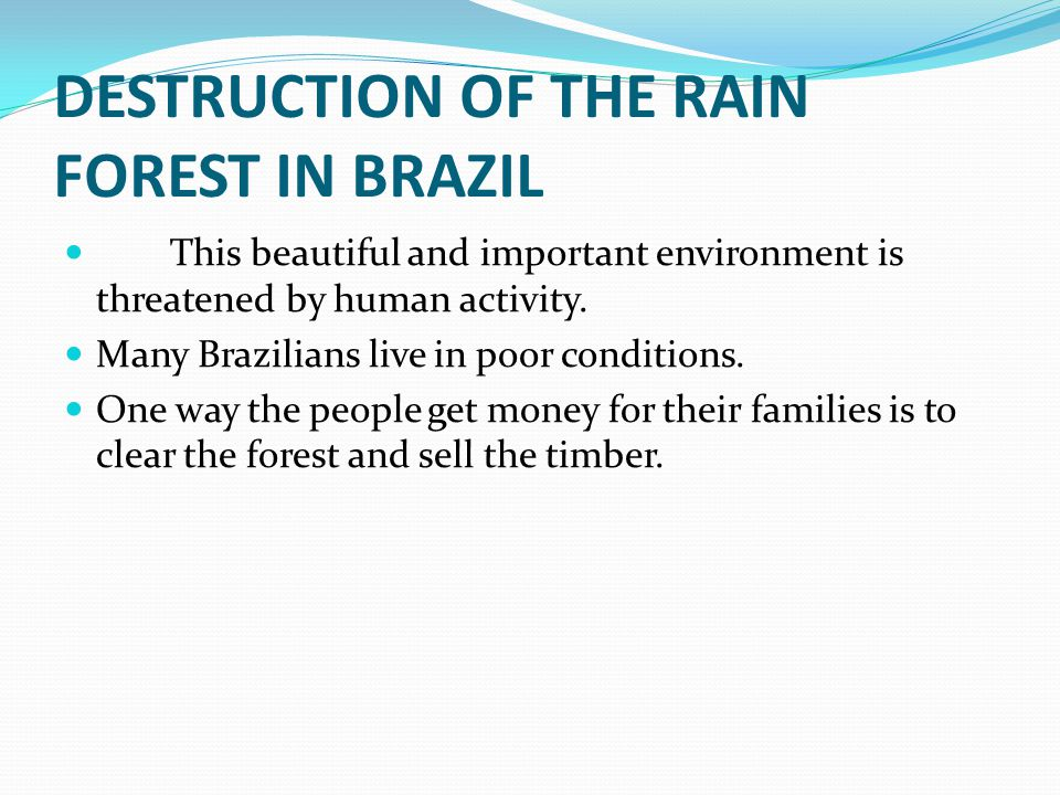 DESTRUCTION OF THE RAIN FOREST IN BRAZIL This beautiful and important environment is threatened by human activity.