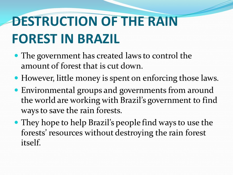 DESTRUCTION OF THE RAIN FOREST IN BRAZIL The government has created laws to control the amount of forest that is cut down. However, little money is sp
