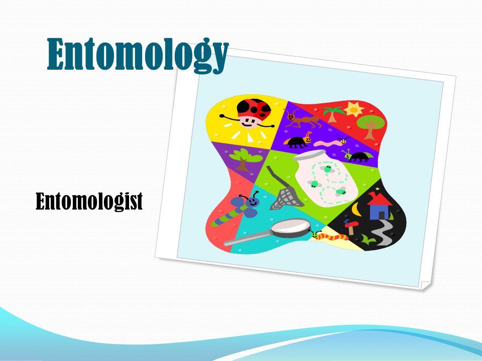 Entomologist Entomology