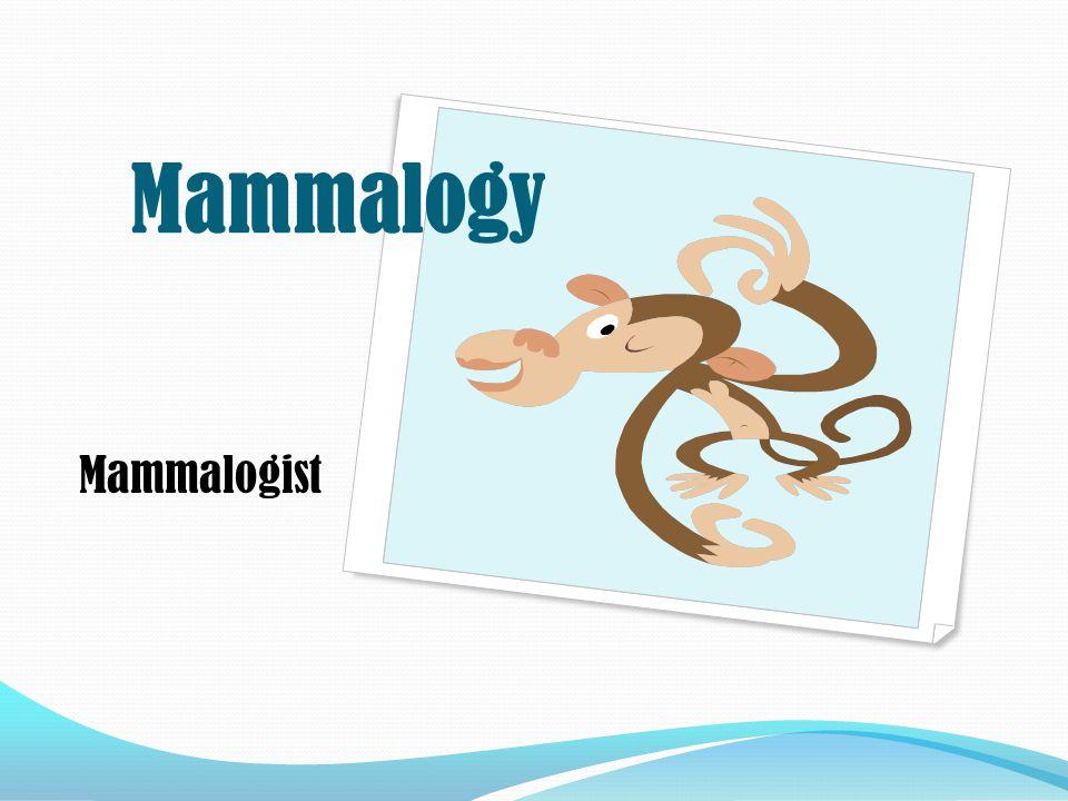 Mammalogist Mammalogy
